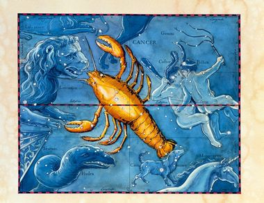 Cancer. Coloured historical artwork of the constellation of Cancer. The constellation is shown as a lobster or crayfish. Cancer is the fourth sign of the Zodiac. The Sun is in Cancer between 22 June and 22 July. It is a small constellation, with no bright stars. The celebrated star cluster Praesepe, or the beehive, is at the animal's heart, at the very centre of its body. The path of the Sun through the sky, the ecliptic, is shown by the black and red line at centre. This artwork is based on a sky map by the Polish-German astronomer Johannes Hevelius (1611- 1687), published posthumously in 1690., Image: 102955327, License: Rights-managed, Restrictions: , Model Release: no, Credit line: Profimedia, Sciencephoto RM