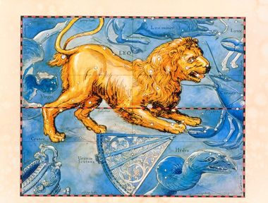 Leo. Coloured historical artwork of the constellation of Leo. The constellation is depicted as a lion. Leo is the fifth sign of the Zodiac. The Sun is in Leo between 23 July and 22 August. It is a prominent constellation, with the arrangement of stars bearing a resemblance to the figure they represent. The bright star Regulus forms the lion's heart, and the star Denebola is at the base of its tail. The Sun's path, the ecliptic, is shown by the black and red line at centre. This artwork is based on a sky map by the Polish-German astronomer Johannes Hevelius (1611- 1687), which was published posthumously in 1690., Image: 102955307, License: Rights-managed, Restrictions: , Model Release: no, Credit line: Profimedia, Sciencephoto RM