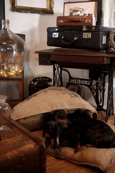 Donja Stubica, 291113. Drazen i Vedran kreativni dvojac iz Habiter chic ducana iz Boskoviceve 6 uredili su i dekorirali svoju staru drvenu kucu za Bozic. Kuca je uredjena sa kombinacijom starog namjestaja, dio asortima iz njhovog ducana i stvari koji su sami napravili i preuredili. Prije ovoga ducana bili su vlasnici Bakine skrinje poznatoga ducana za ljude koji vole francuski chic i engleski country stil. Foto: Berislava Picek / CROPIX